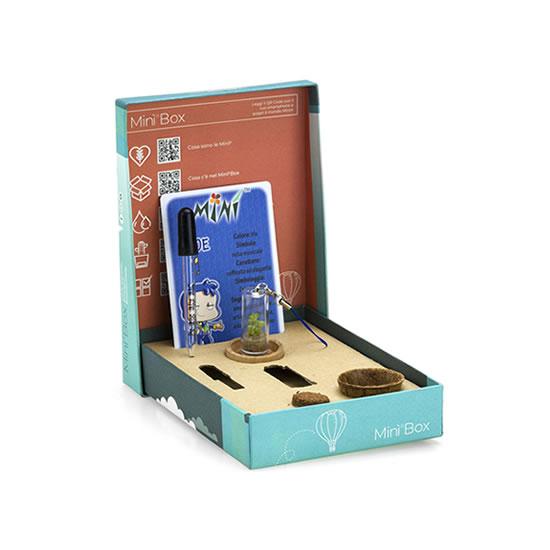 Minì Box Fun: tutto il necessario per curare e fare crescere la tua Minì!